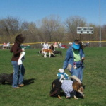 tails and trails dog event omaha